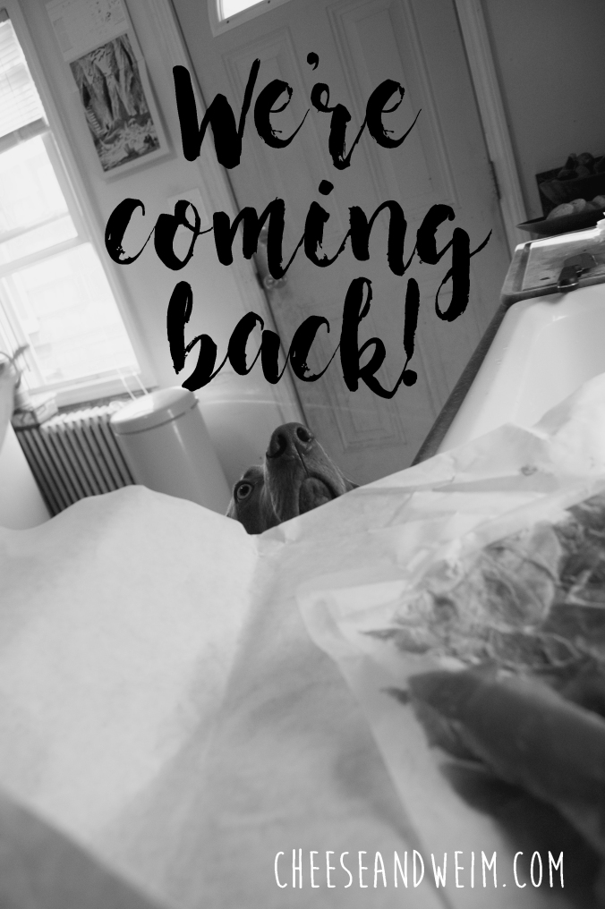coming-back